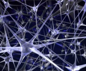 neurons_img