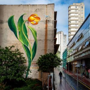 CuritibaBikeFlower_MonaCaron_6898