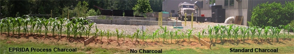 charcoal_soiltest_01