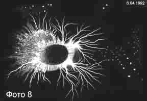 parazit-1