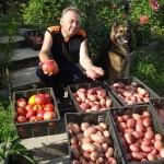Igor Ljadov a jeho postupy pri hnojení záhrady