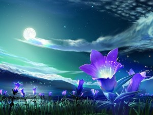 flower-602x451