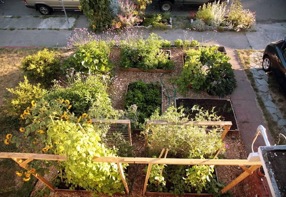 04-lawn-garden-transformation_0