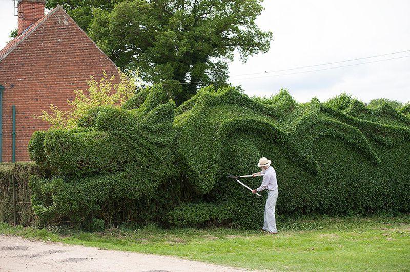 dragon_hedge_05