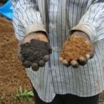 Staroveká ekologická agrotechnika môže pomôcť poľnohospodárstvu