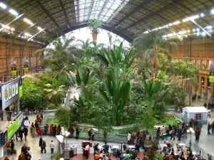 800px-Invernadero_de_Atocha,_Madrid_-_view_2