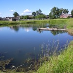Čím je rybník hlbší, tým je ryba menšia a drahšia