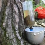 Čistenie vody v prípade núdze