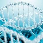 Programovanie DNA a celého organizmu