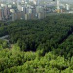 Zelené ochranné pásma okolo miest a obcí