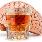 Alkohol brzdí tvorbu nových mozgových buniek