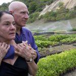 Manželia vysadili  za 20 rokov 2 milióny stromov
