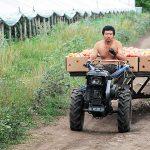 Čínski farmári vRusku