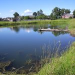Ako urobiť nepriepustné dno rybníka biologickým spôsobom