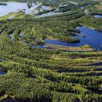 Oglobálnom význame Sibíri zekologického hľadiska