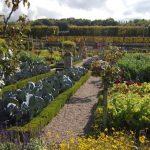Obroda záhrad vEurópe
